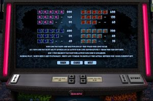 Screenshot image of the paytable for the Double Bubble slot game from Realistic
