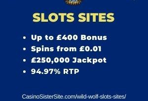 "Featured image for the wild wolf slots sites review showing the game's logo and the text: ""Up to £400 bonus,spins from £0.01, £250,000 jackpot,94.97% RTP."""