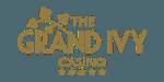 Logo image for Grand Ivy Casino