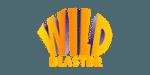 wildblaster casino sister site article logo